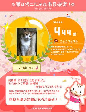 2014_shicho_fin.jpg
